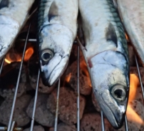 Mackerel barbeque