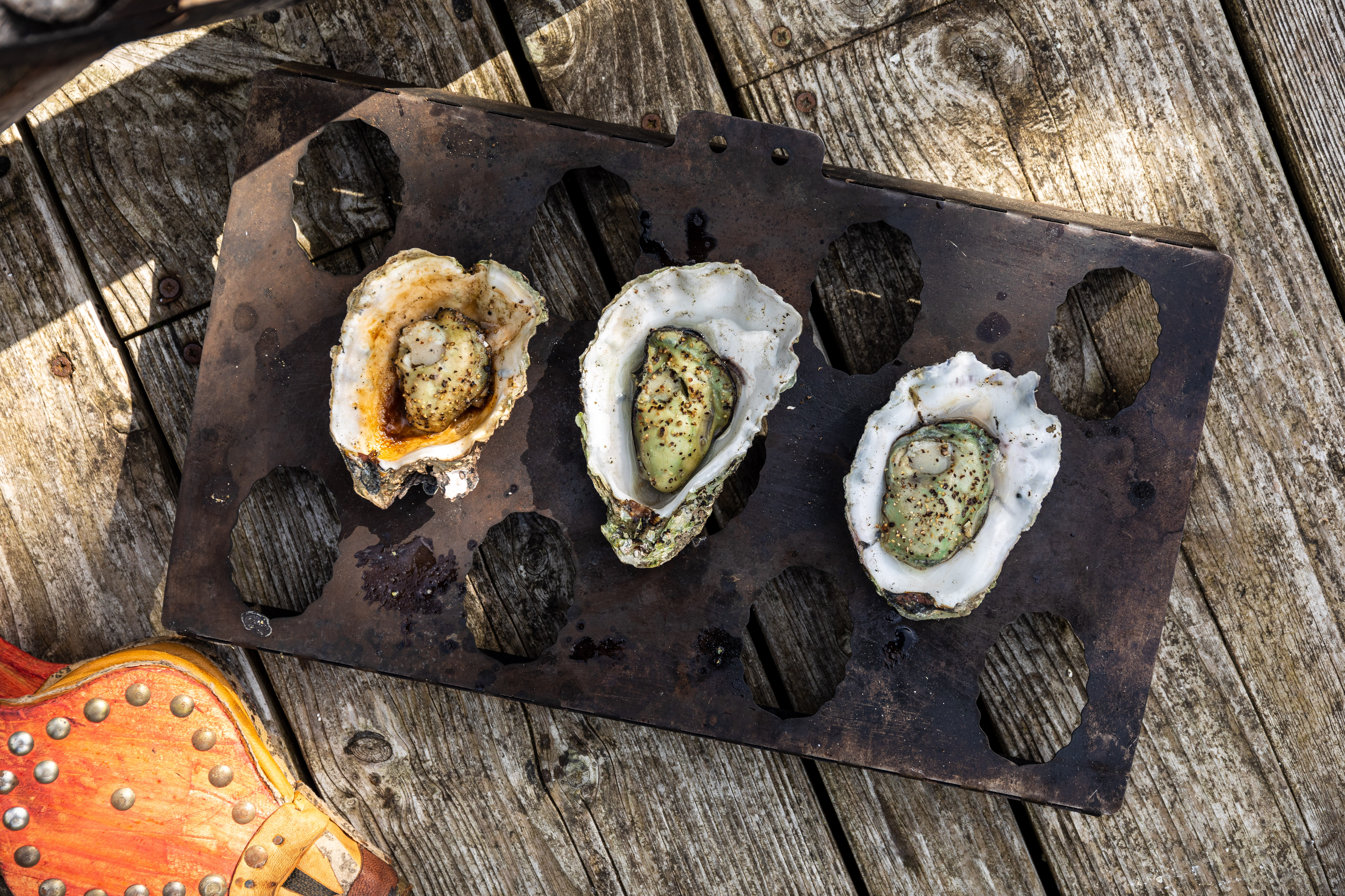 BBQ Oysters by Mike Searle